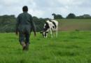 منها الزيادة في سعر الحليب وفي نسبة دعم المحروقات: إجراءات جديدة لفائدة الفلاحين