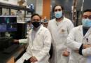 كندا :باحثان تونسيان ضمن الفريق ضمن فريق طبي يتوصل إلى طريقة للوقاية من مرض الزهايمر
